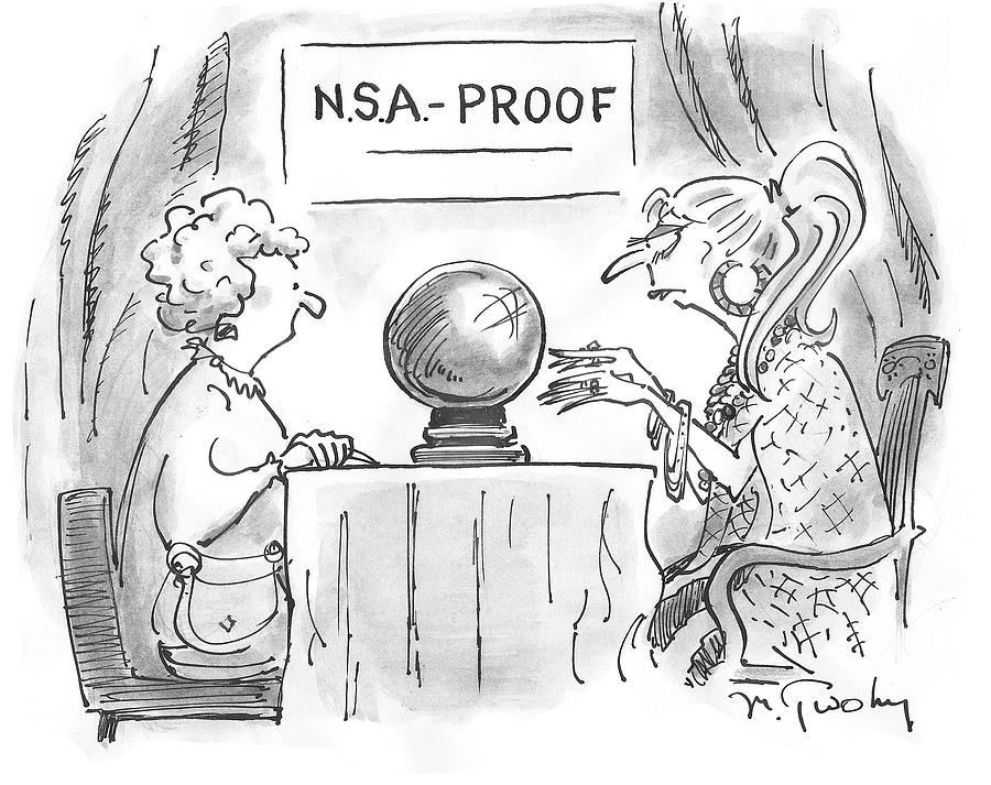 Nsa Proof Drawing by Mike Twohy