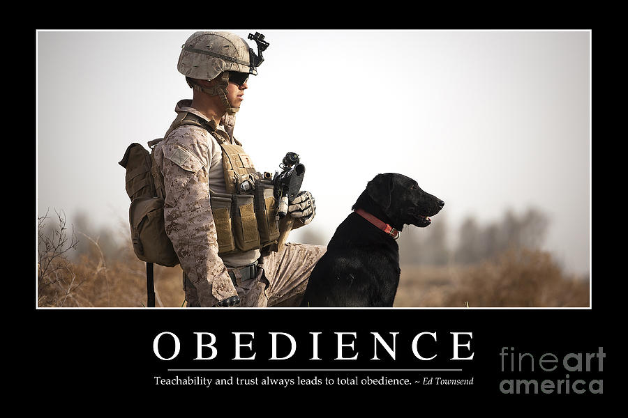 Horizontal Photograph - Obedience Inspirational Quote by Stocktrek Images