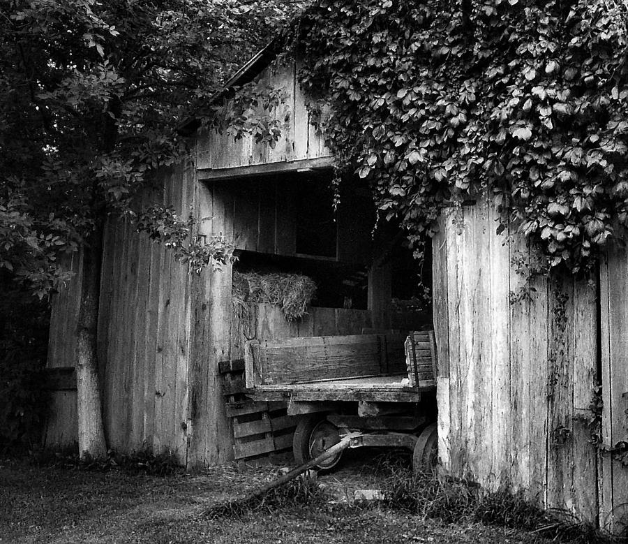 Black And White Photography Photograph - Old Barn And Wagon by Julie Dant