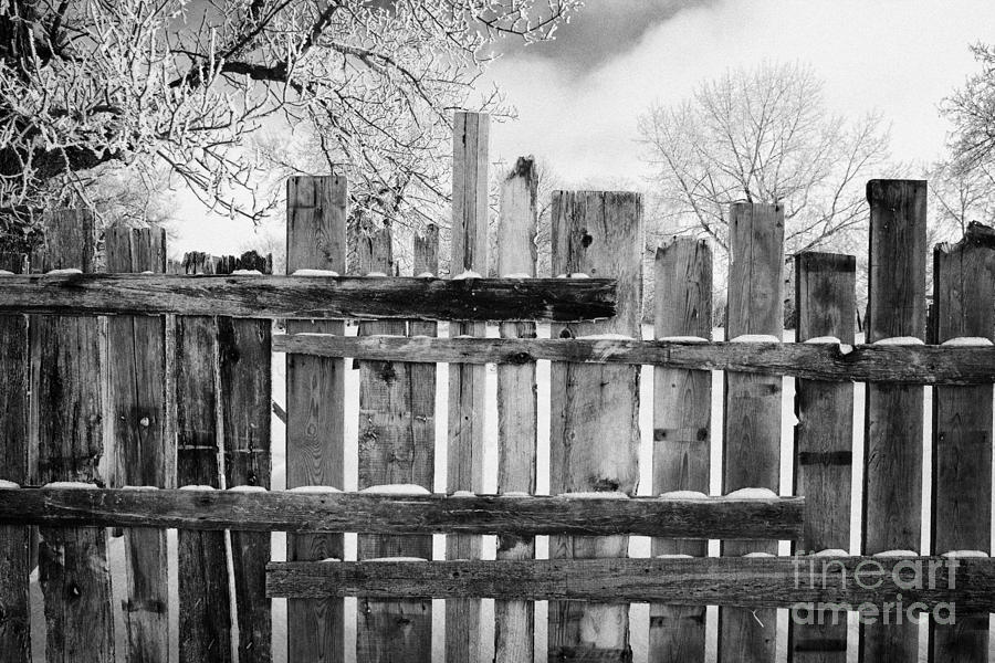 Old Photograph   Old Patched Up Wooden Fence Using Old Bits Of Wood In Snow  Forget