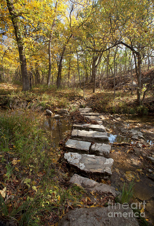 Pathways Photograph - One Step At A Time by Iris Greenwell