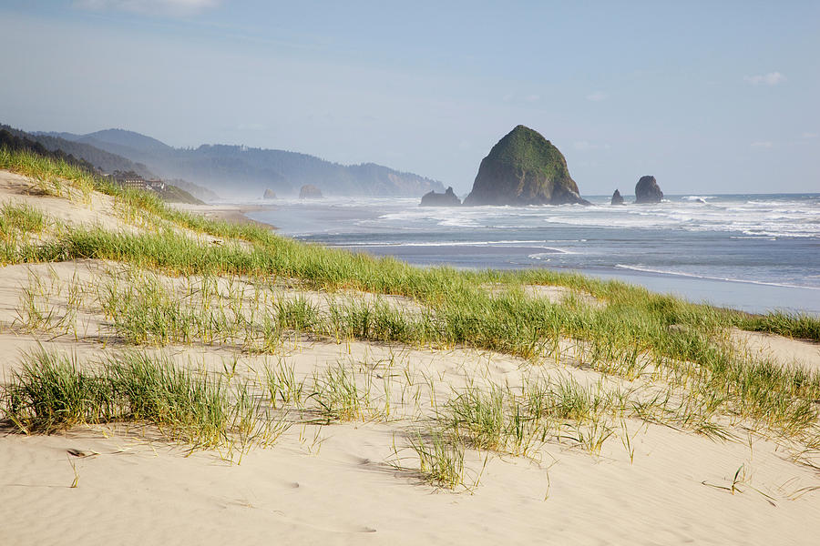 Beach Photograph - Or, Oregon Coast, Cannon Beach by Jamie and Judy Wild