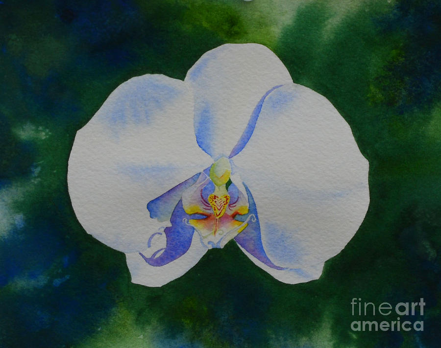 Orchid Painting - Orchid Dance 2 by H Cooper
