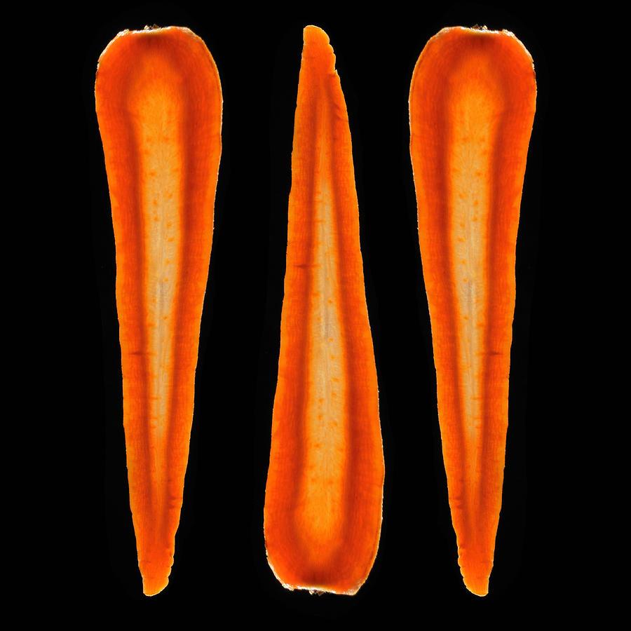 Organic Carrots Photograph by Monica Rodriguez