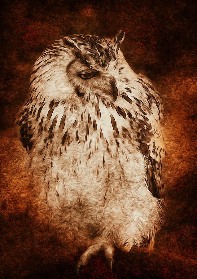 Art Digital Art - Owl by Svetlana Sewell