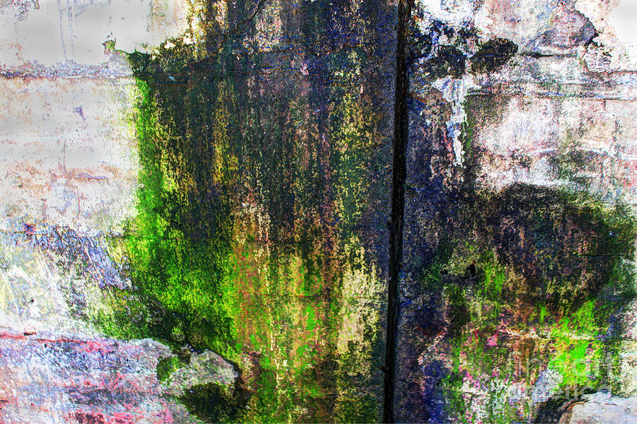Paint Photograph - Paint And Rust 33 by Jim Wright