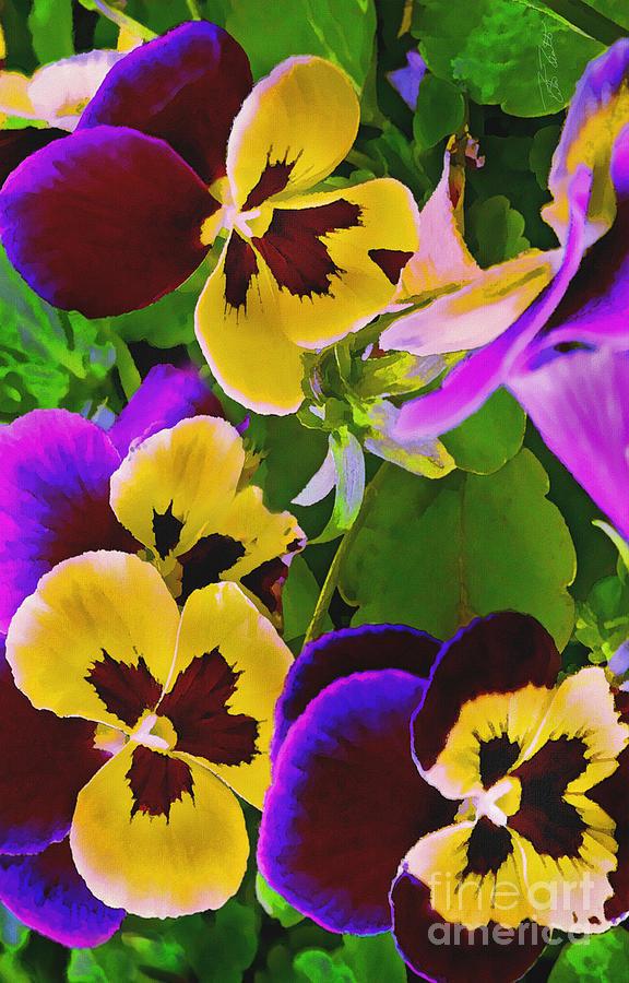 Pansy Digital Art - Painterly Purple Pansy by Peter Piatt