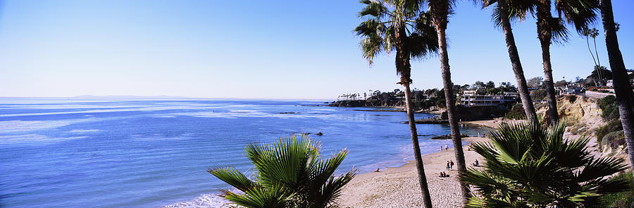 Horizontal Photograph - Palm Trees On The Beach, Laguna Beach by Panoramic Images