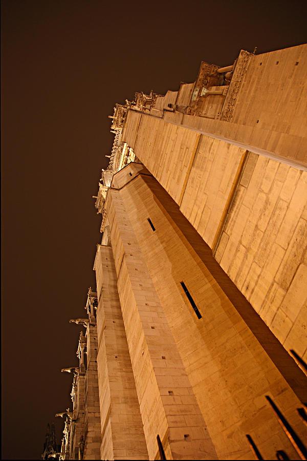 Aged Photograph - Paris France - Notre Dame De Paris - 011310 by DC Photographer