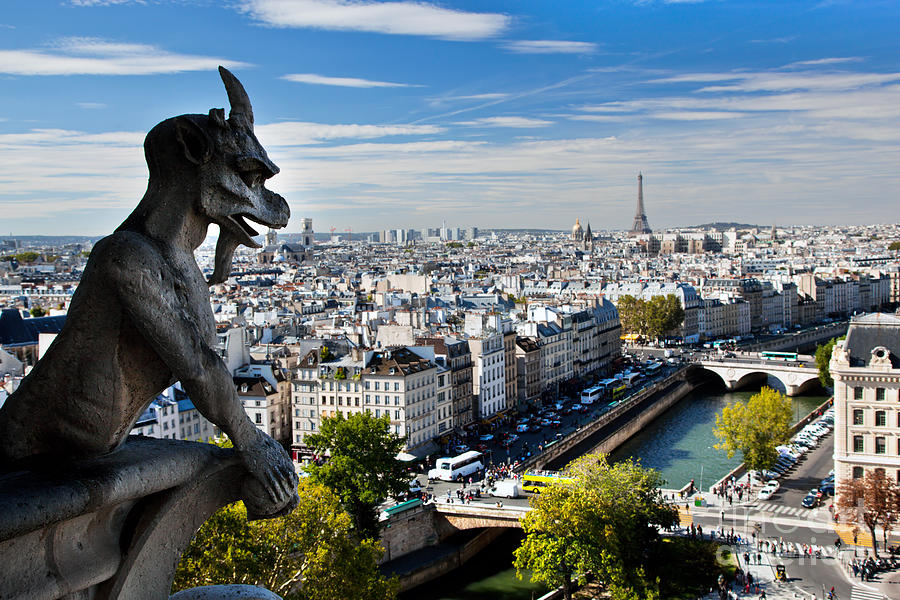 City Photograph - Paris Panorama France by Michal Bednarek