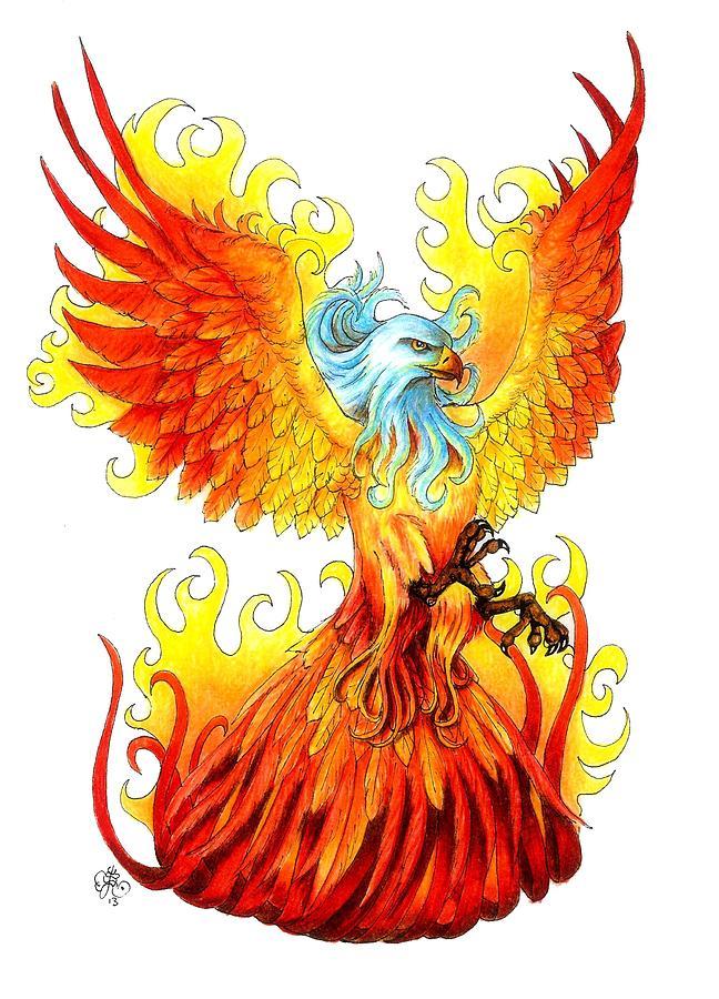 Phoenix Drawing By Scarlett Royal