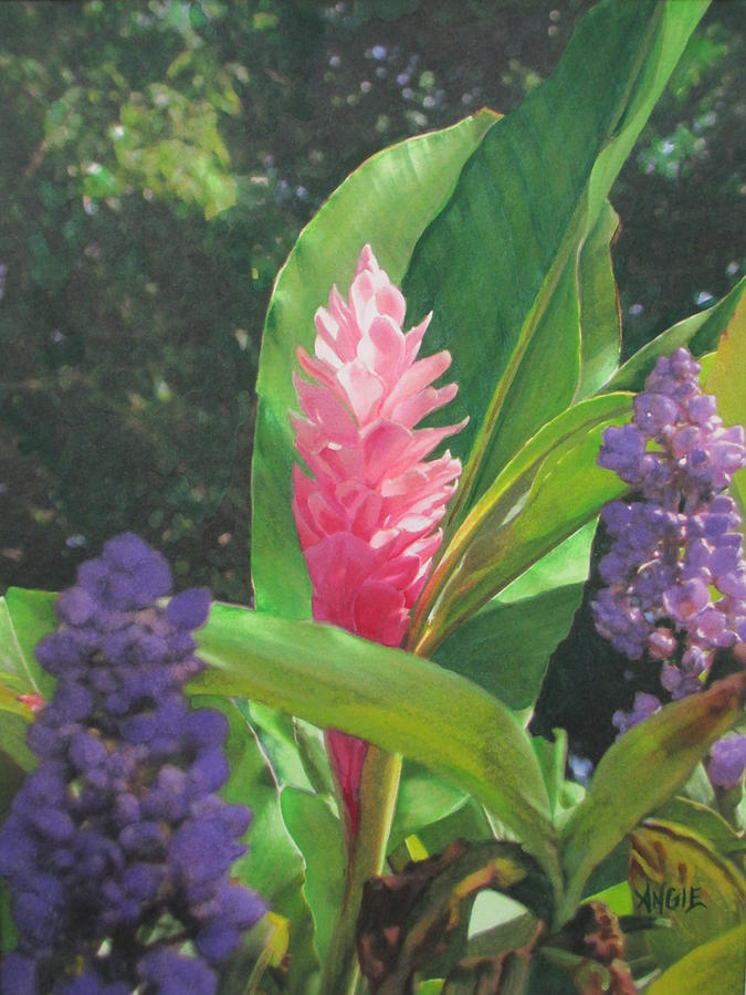 Pink Painting - Pink Ginger by Angie Hamlin
