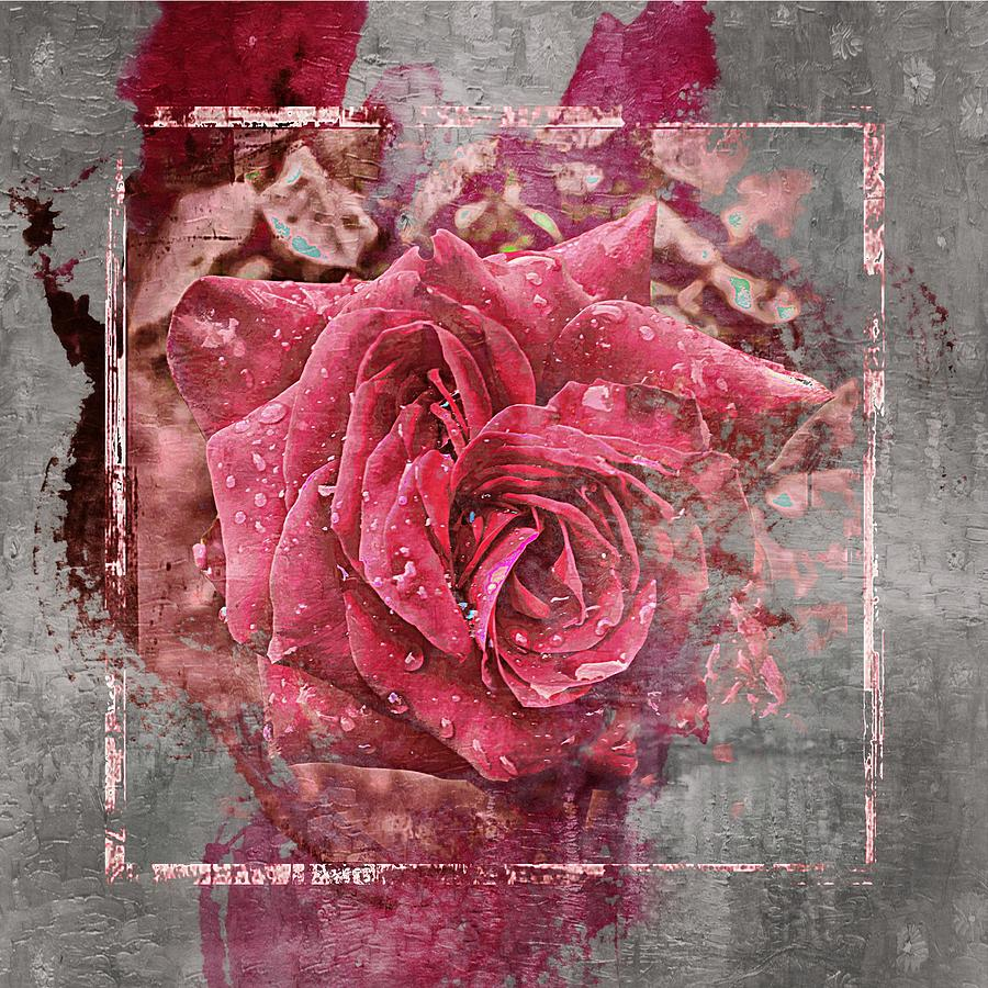Pink Photograph - Pink Rose by Angel Eowyn