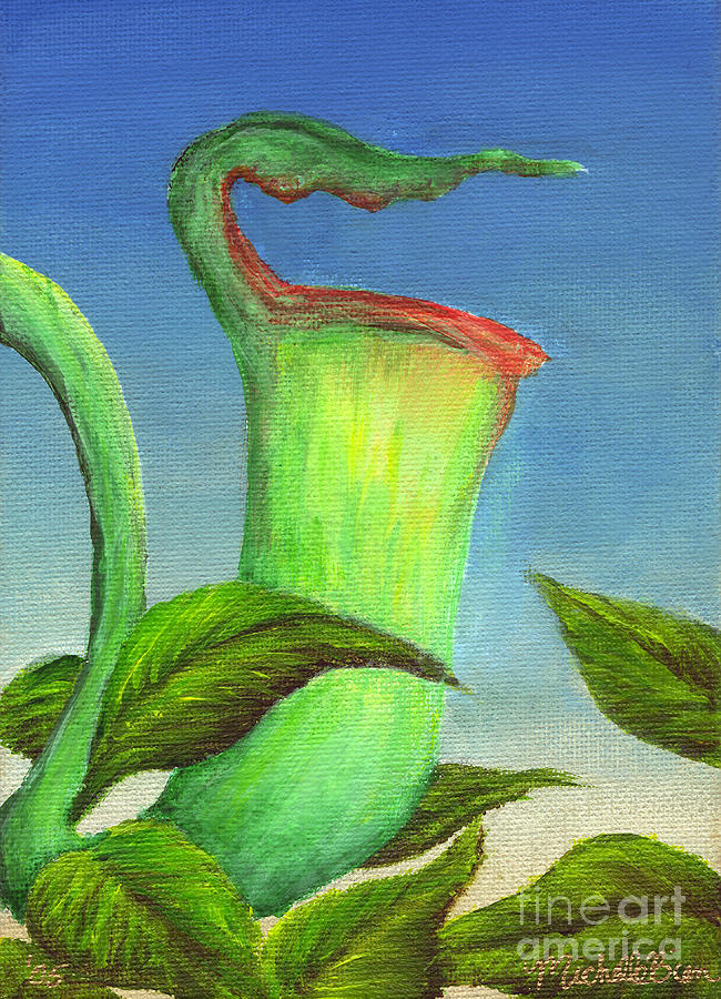 Pitcher Plant by Michelle Bien