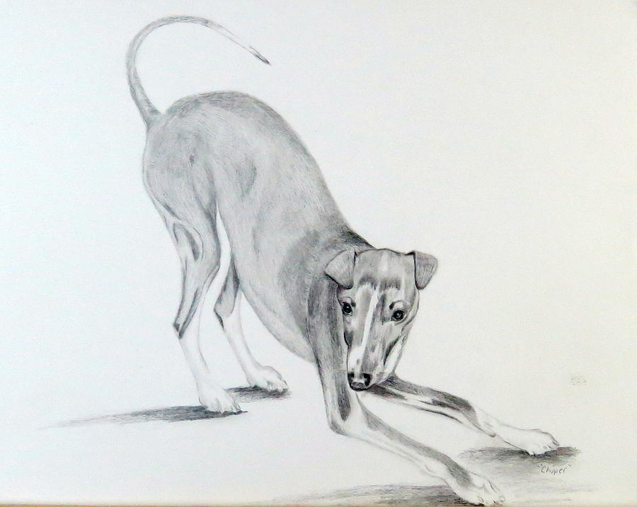 Play Drawing - Play Time by Sharon Schultz