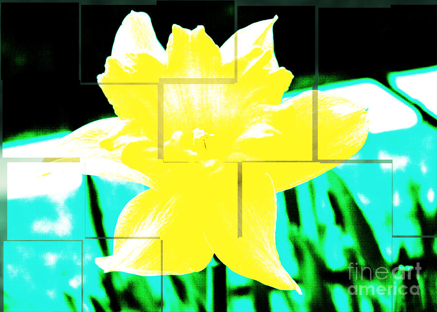 Abstract Photograph - Pop Yellow by Arlene Carmel