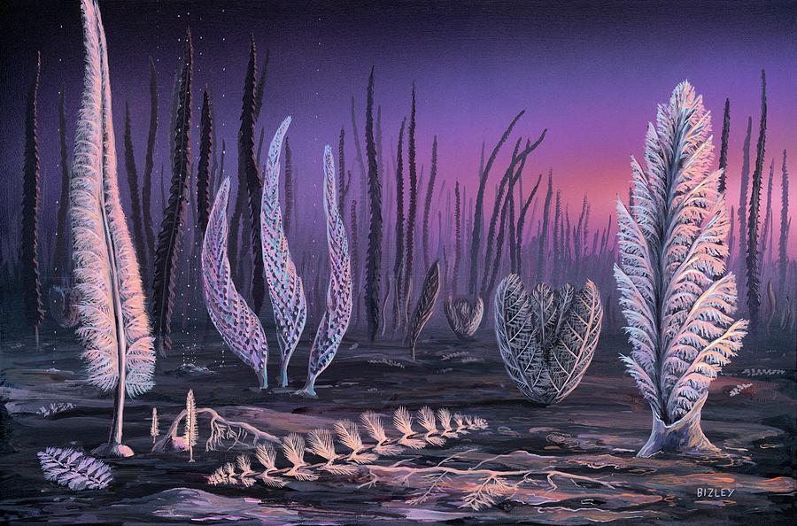 Alga Photograph - Pre-cambrian Life Forms by Richard Bizley