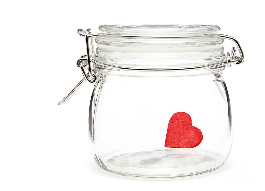 Heart Sculpture - Preserved Heart by Shawn Hempel