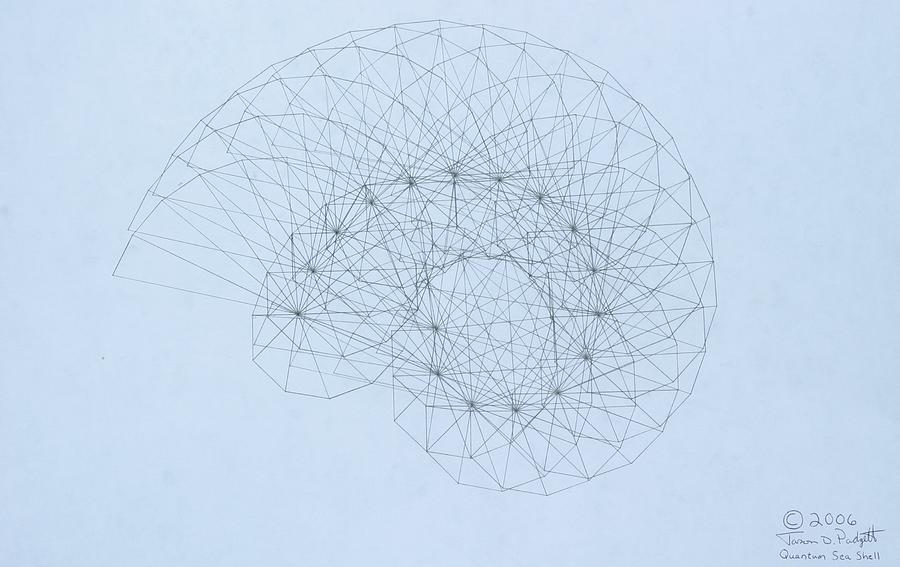 Jason Padgett Drawing - Quantum Nautilus by Jason Padgett