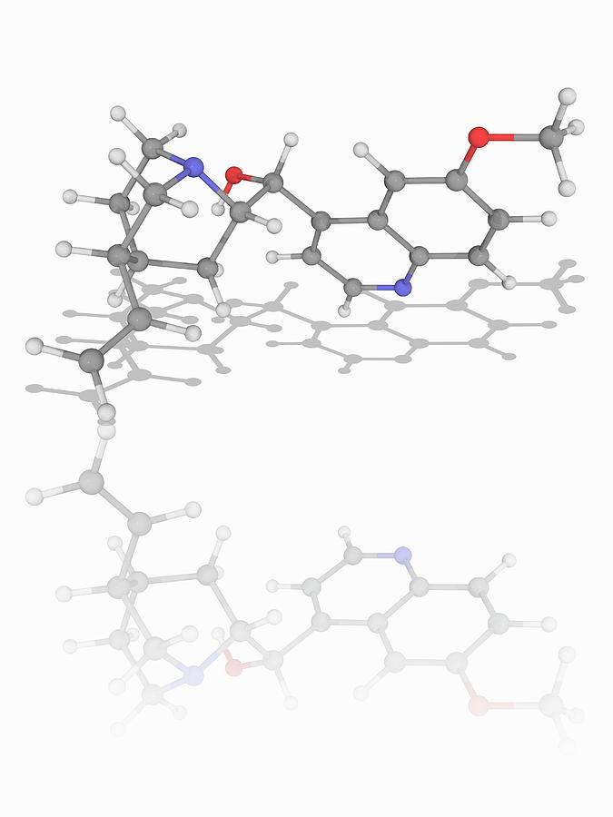 Quinine Drug Molecule Photograph By Laguna Designscience Photo