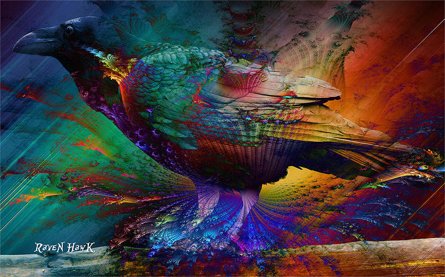 Rainbow Photograph - Rainbow Raven by The Feathered Lady