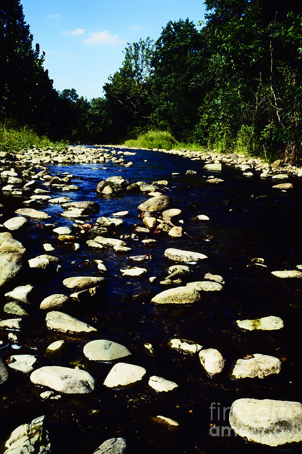 Virginia Photograph - Rapidan River by Thomas R Fletcher