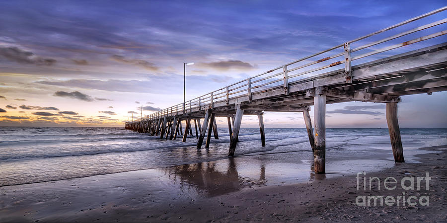 Jett Photograph - Ready Jetty Go by Shannon Rogers