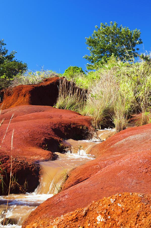 Red Dirt River, Kauai Photograph by Michaelutech