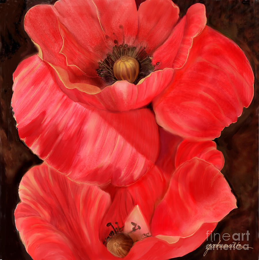 Red Painting - Red Poppy One by Joan A Hamilton