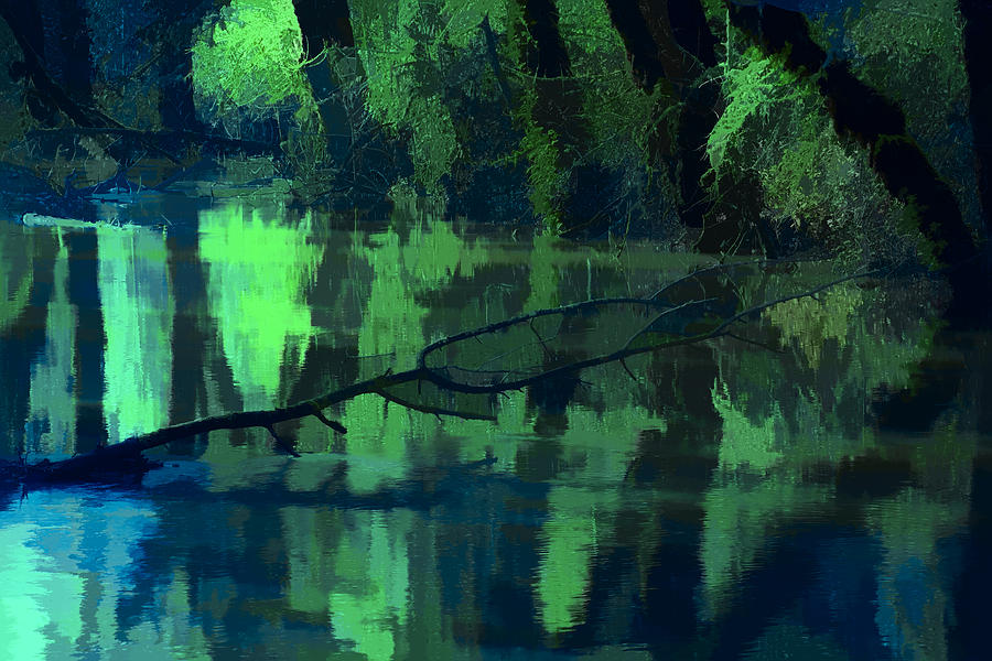 Digital Painting Photograph - Reflection by Bonnie Bruno