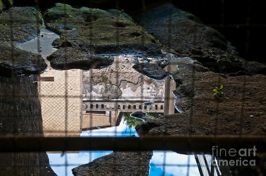 Herculaneum Photograph - Reflections by Marion Galt