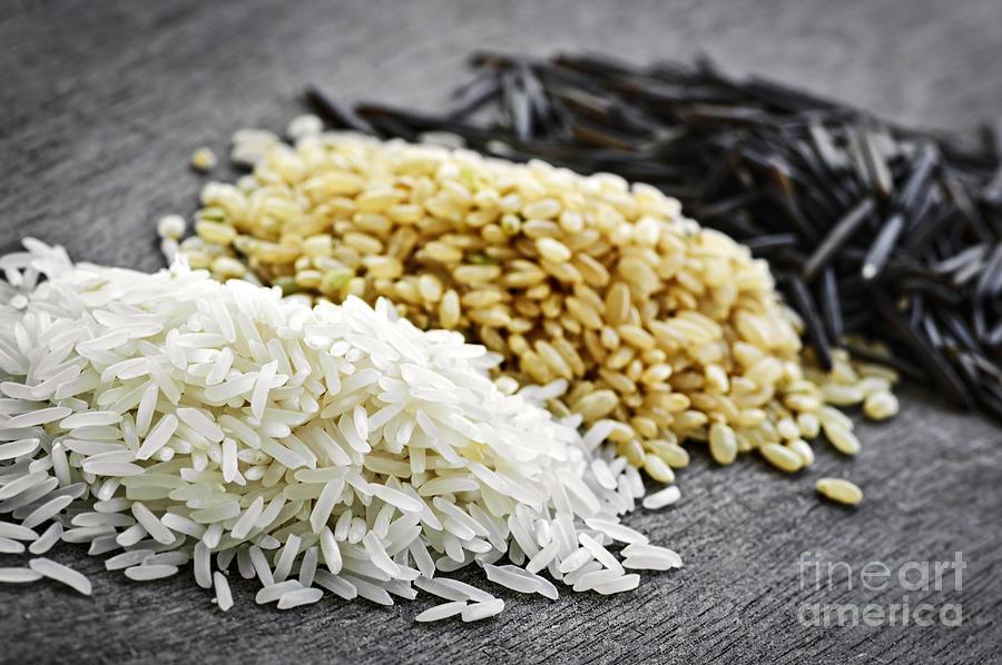 Rice Photograph - Rice by Elena Elisseeva