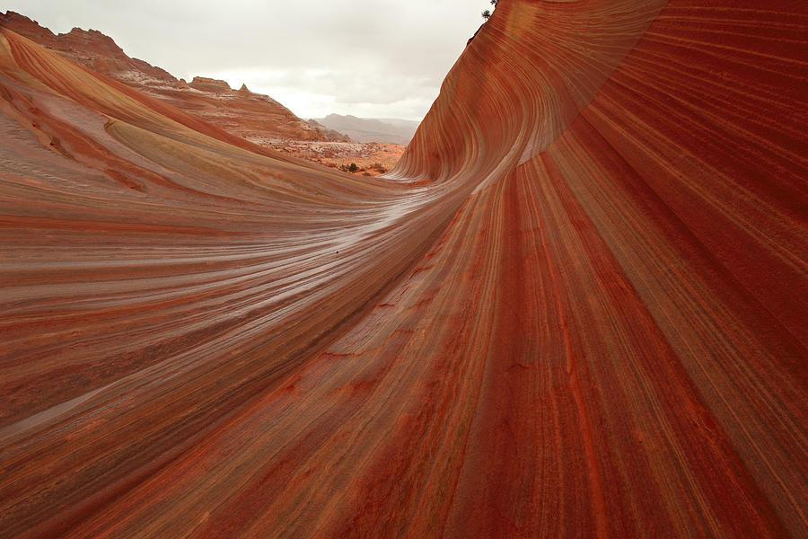 Arizona Photograph - Riding The Wave by Darryl Wilkinson
