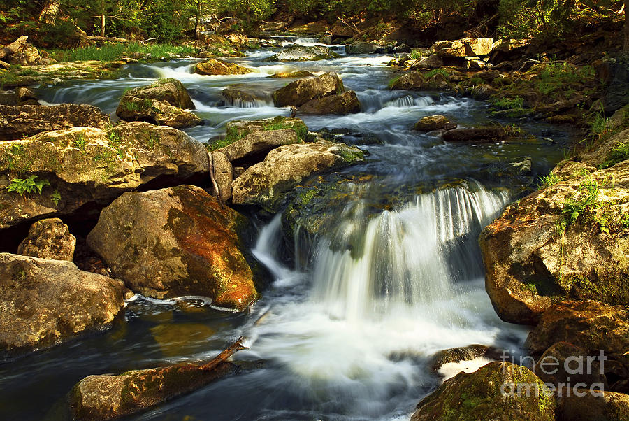 Waterfall Photograph - River Rapids by Elena Elisseeva