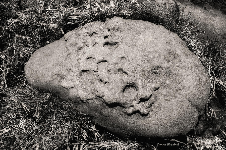 Rock Photograph - Rock Of Ages by Donna Blackhall