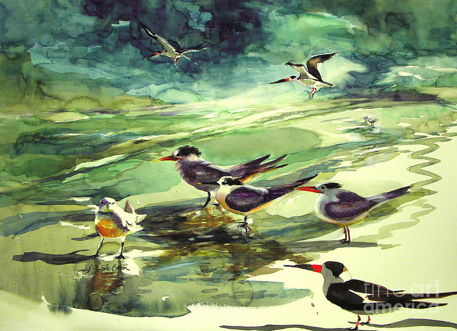 Watercolor Painting - Royal Terns And Black Skimmers by Julianne Felton