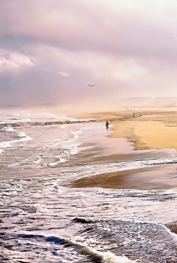Jersey Shore Photograph - Run For The Wave by William Walker