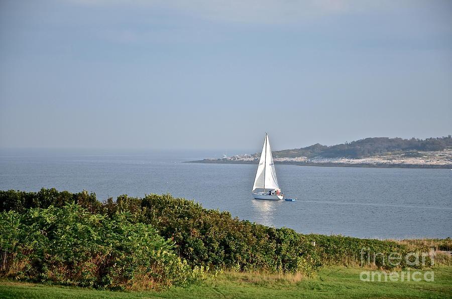 Sail Away Photograph