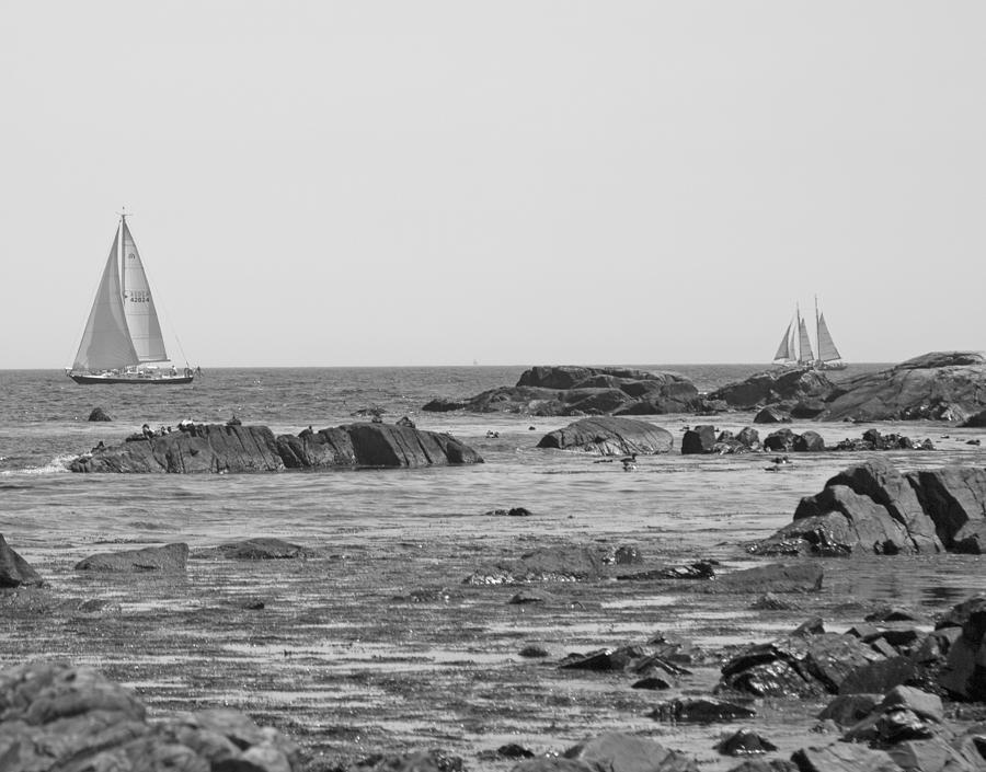 Kennebunkport Photograph - Sailing by Betsy Knapp
