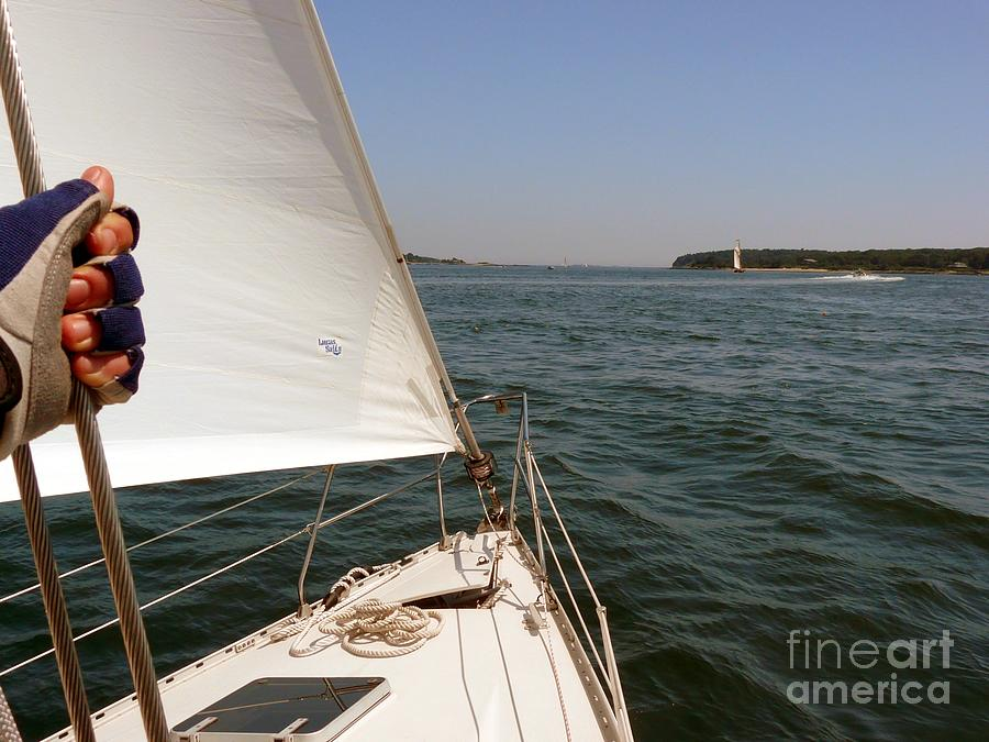 Sailing Photograph - Sailing by Christine Stack