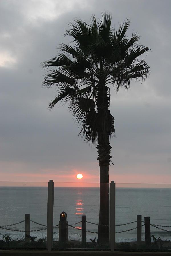 San Diego Photograph by Scott Snizek