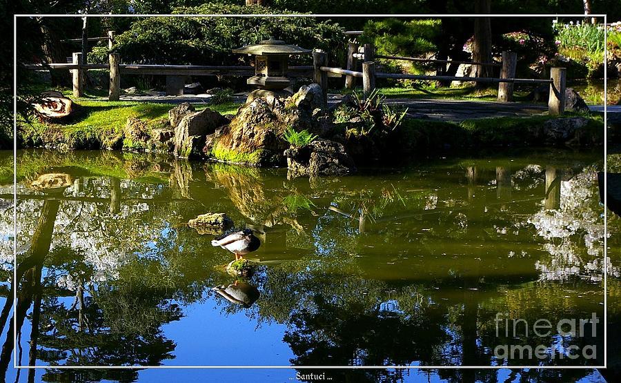 Japanese Tea Garden Photograph - San Francisco Golden Gate Park Japanese Tea Garden 10 by Robert Santuci
