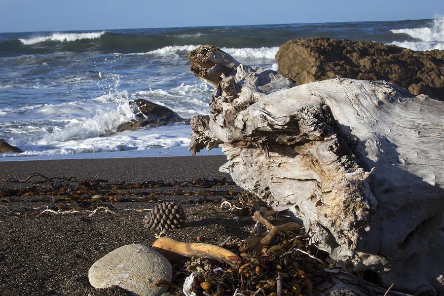 San Simeon Beach Photograph by Jose M Beltran
