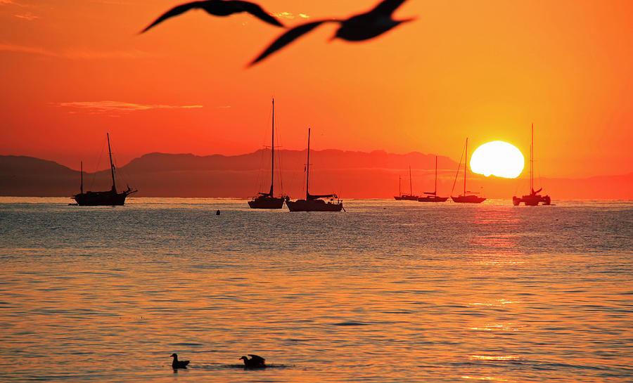 Santa Barbara Sunrise by Sheila Kay McIntyre
