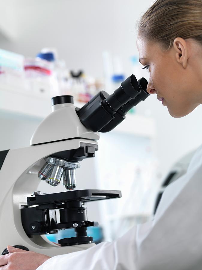 Microbiology Student Internship
