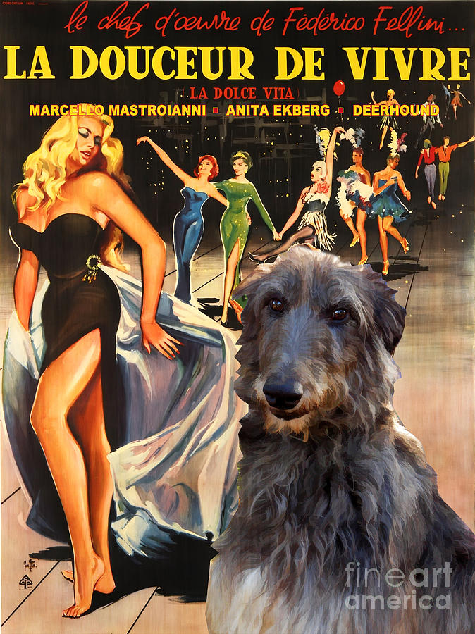 Scottish Deerhound Painting - Scottish Deerhound Art - La Dolce Vita Movie Poster by Sandra Sij