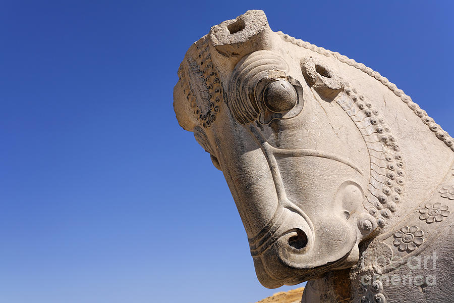 Sculture Of A Horses Head At Persepolis In Iran Photograph By Robert Preston