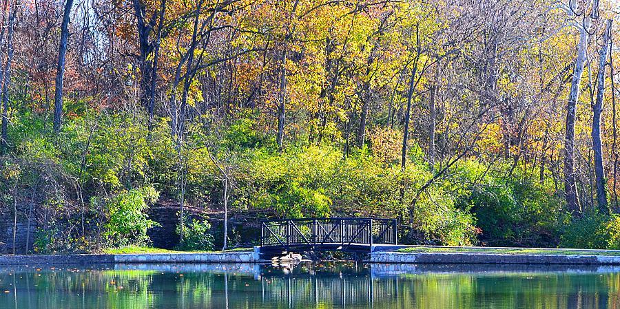 Scenery Photograph - Sequiota Park by Deena Stoddard