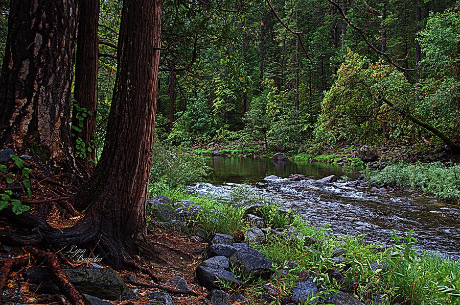 Rivers Photograph - Serene And Beautiful by Lynn Bawden