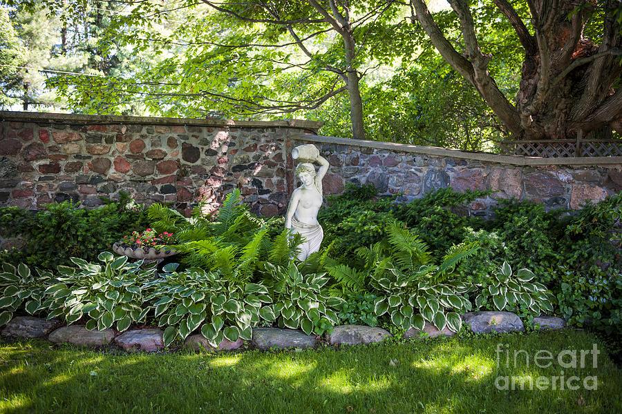 Garden Photograph - Shady Perennial Garden by Elena Elisseeva